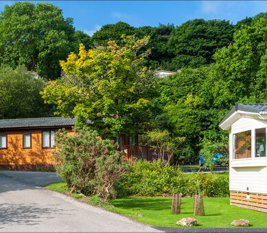 Caravans and lodges at  River Valley Country Park